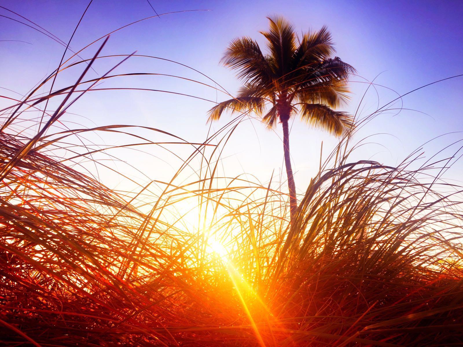 Sonnenuntergang, Fort Meyers Bech, Florida