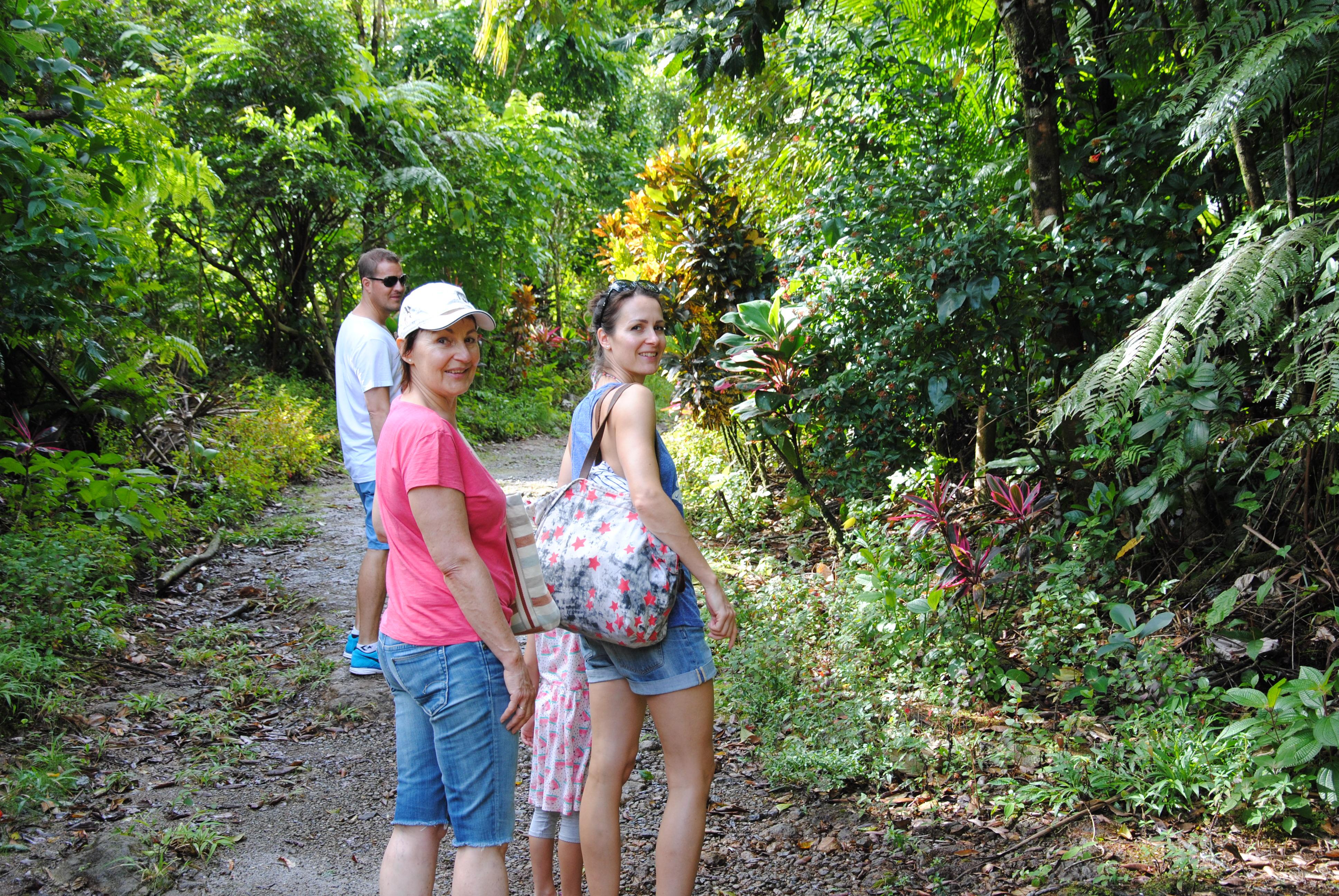 Weg zu den Spanny Wasserfällen, Dominica