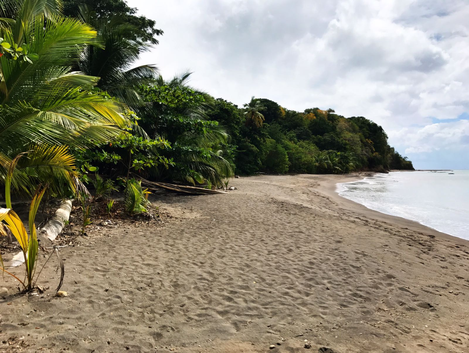 Salisbury Beach, Dominica