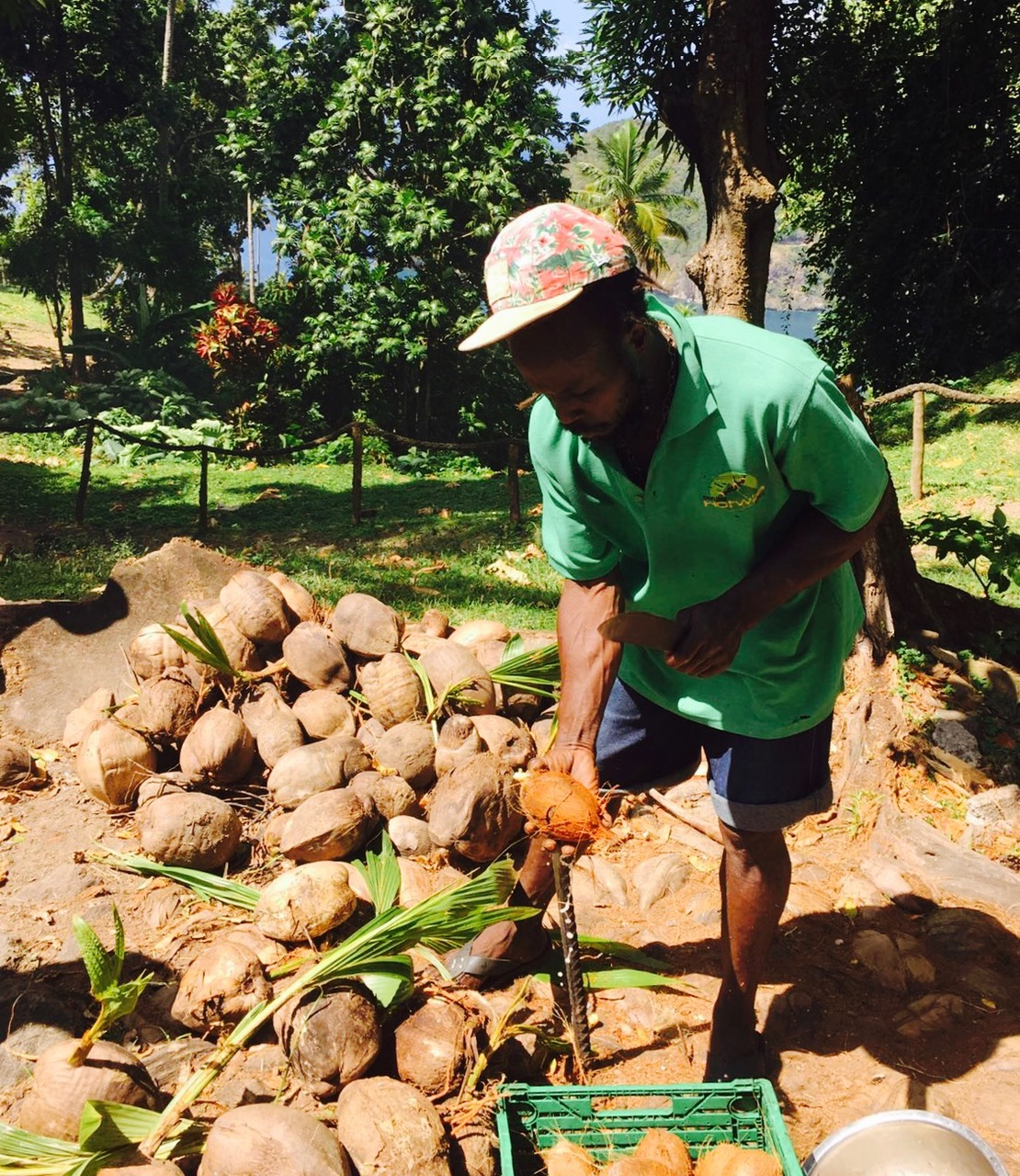 Kokosnussverkostung, Plantage Morne Coubaril Estate, St. Lucia