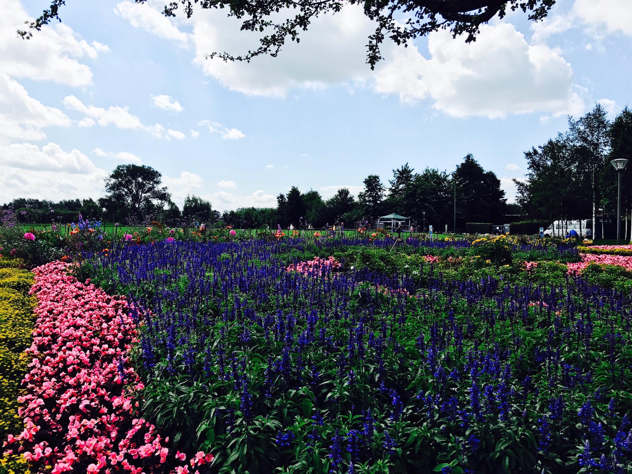 Ausflugstipps NRW, Gartenschaupark Rietberg, Blick auf Blumenbeete