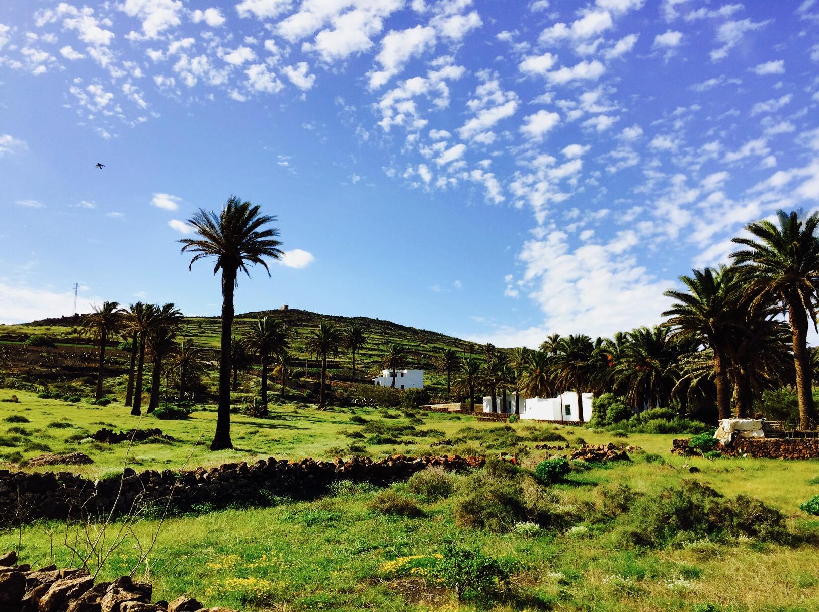 Haria auf Lanzarote, Kanaren