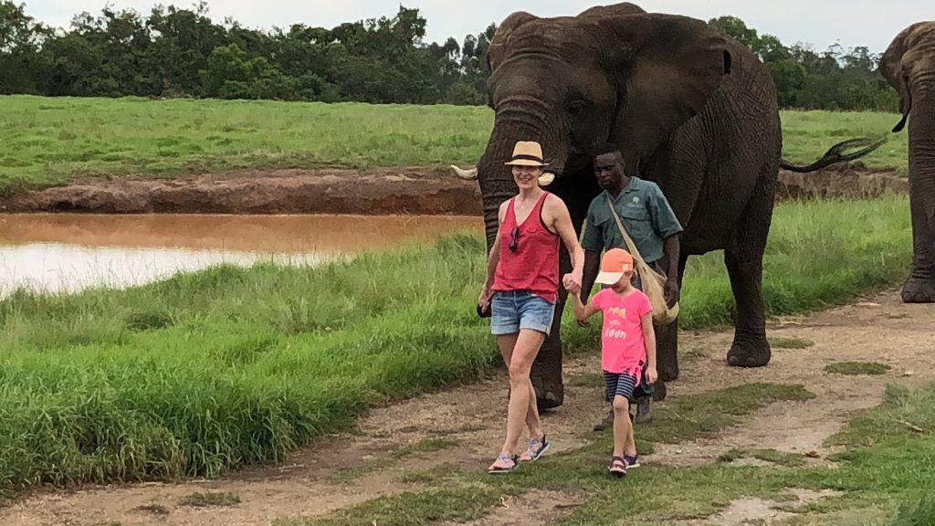 Spaziergang im Elephant Sanctuary, Plettenberg Bay, Südafrika