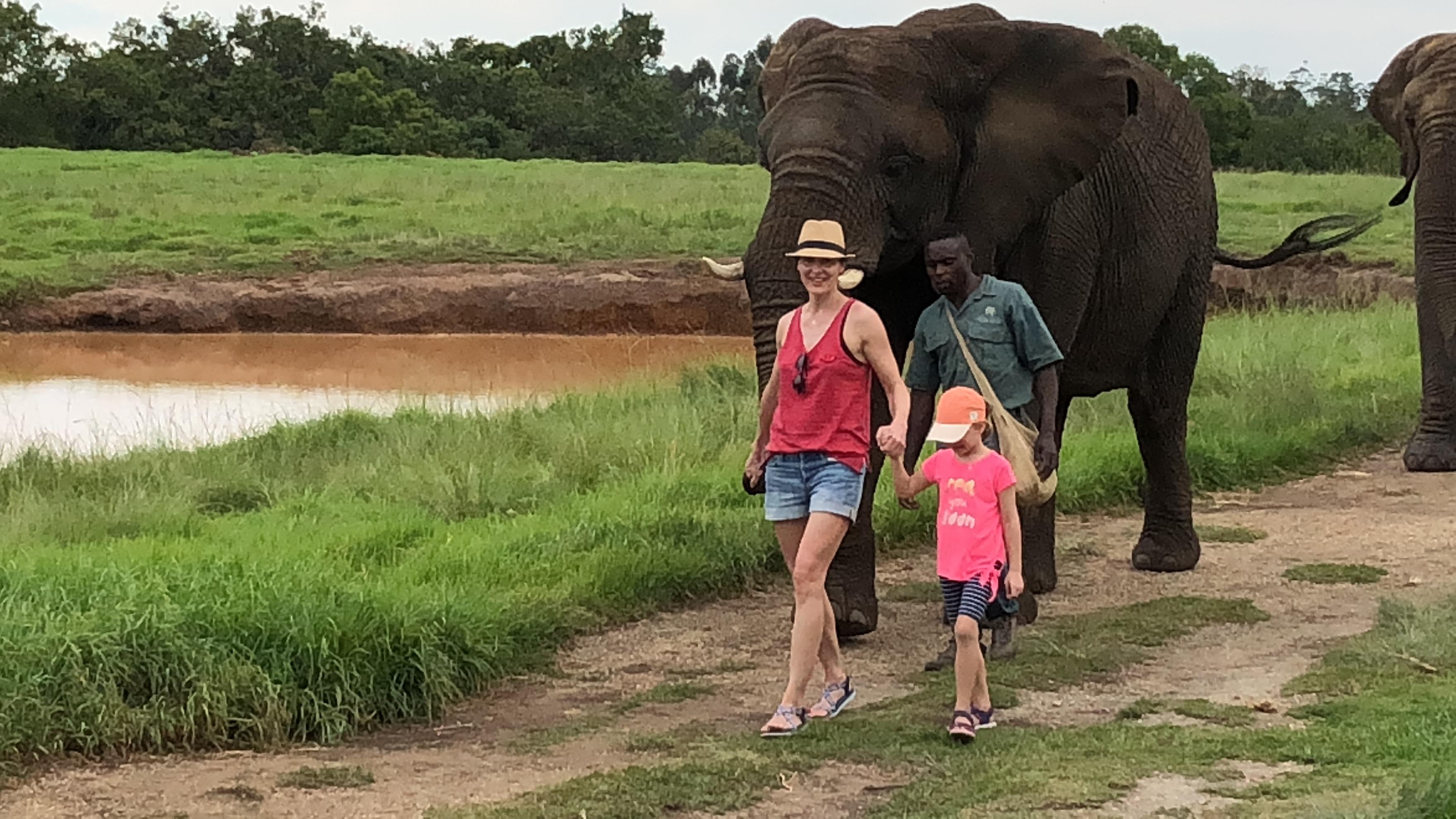 Spaziergang mit Elefanten im Elephant Sanctuary, Plettenberg, Südafrika
