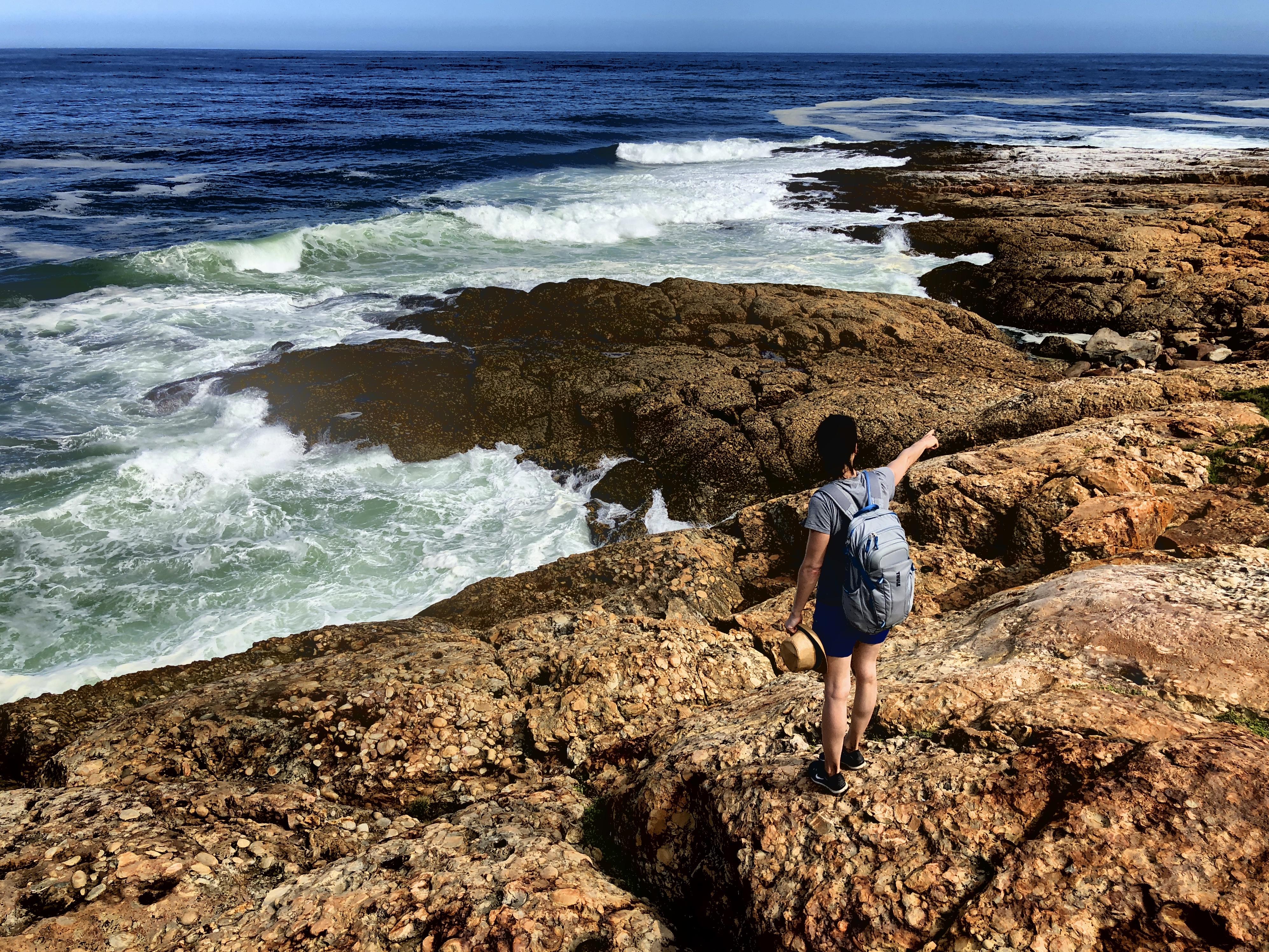 Point, Robberg Island, Südafrika