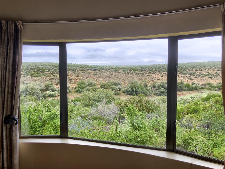Ausblick von Chalet Nr. 8, Addo Park, Südafrika