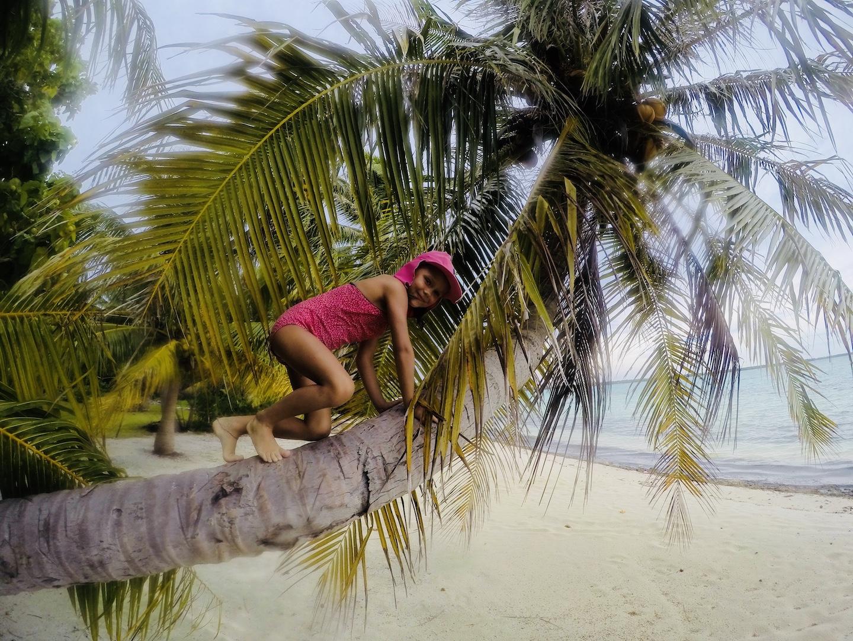 Kind klettert auf Palme auf einem Motu bei Maupiti