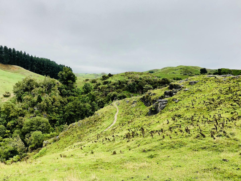 Auenland, Neuseeland