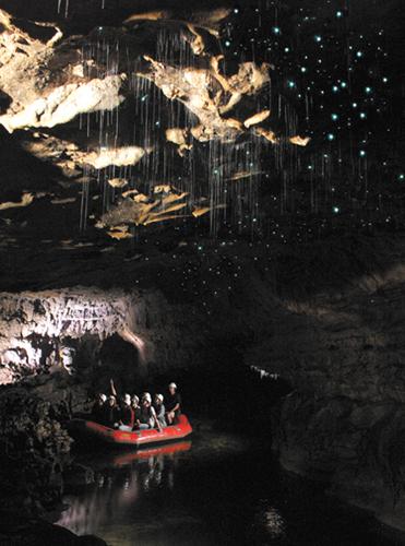 In den Glowworm Caves, Neuseeland