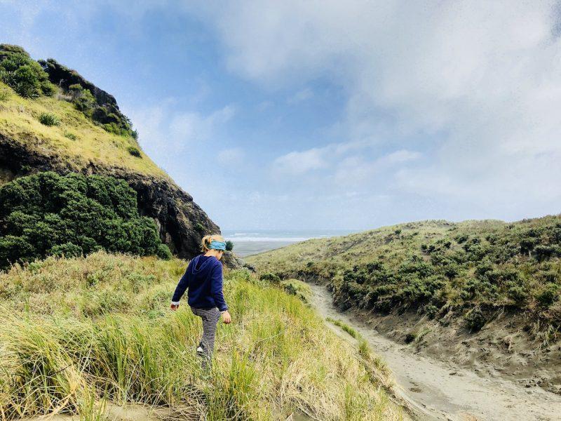 Weg zum Karekare Beach, Neuseeland