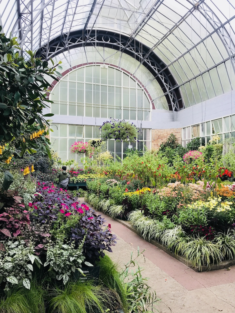 Wintergarten im Auckland Domain Park