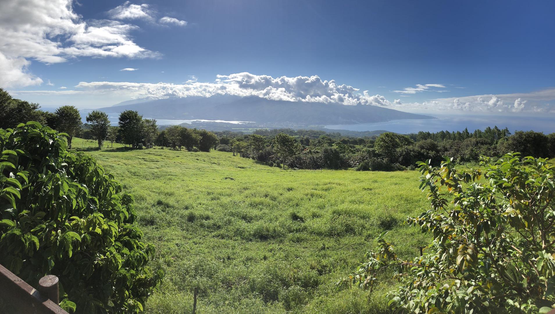 Le Belvedere, Tahiti