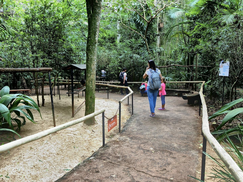 Vogelpark bei den Iguazu Wasserfällen, Brasilien