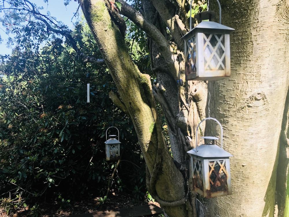 Wunschbaum im Kloster Garten