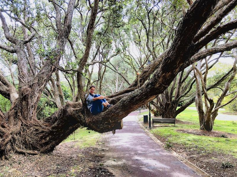 Domain Park, Auckland