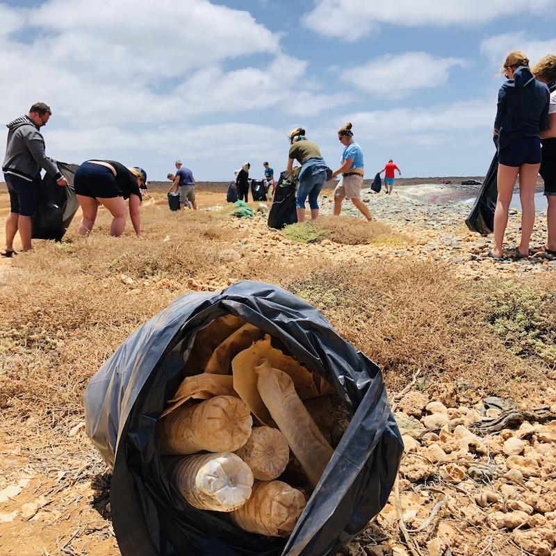 Cleanup Boa Vista