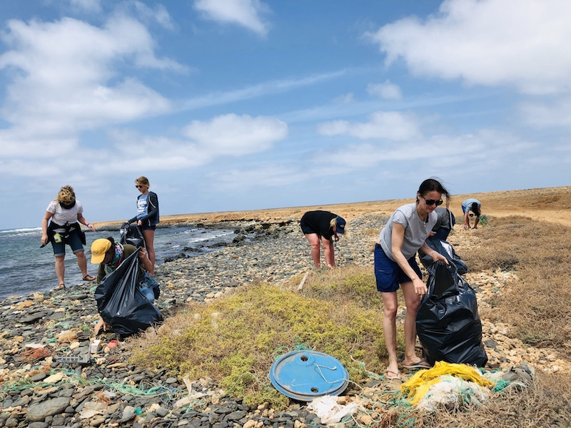 Cleanup in der Haifischbucht auf Boa Vista