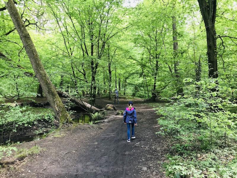 Kirchheller Heide, Bottrop