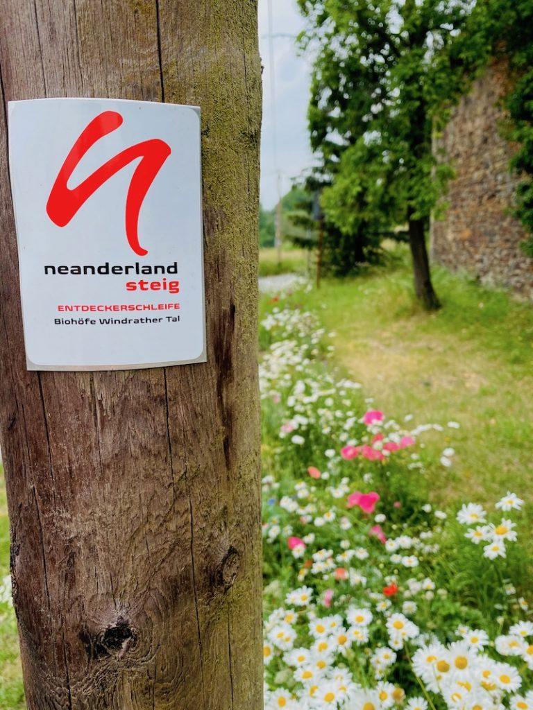 Wandertouren NRW, Neanderlandsteig