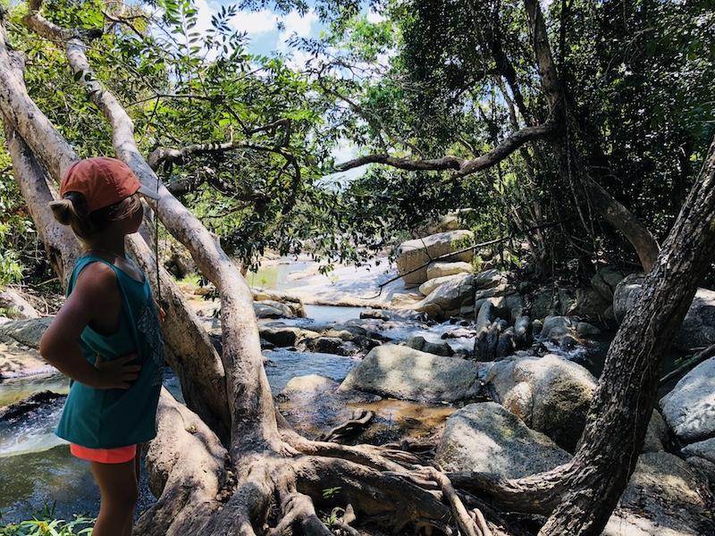 Kho Phangan, Dschungeltour