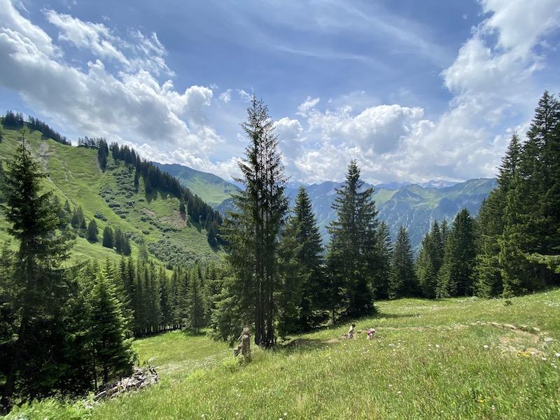 Wanderung zum Gipfelkreuz Hahnenköpfle, Allgäu