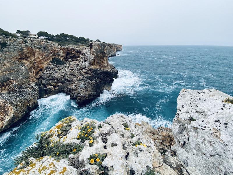 Naturschutzgebiet bei Porto Cristo